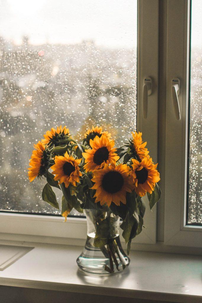 erzorging zonnebloem in vaas